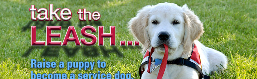 Close-up of banner stand design with puppy holding leash in mouth and text: take the LEASH